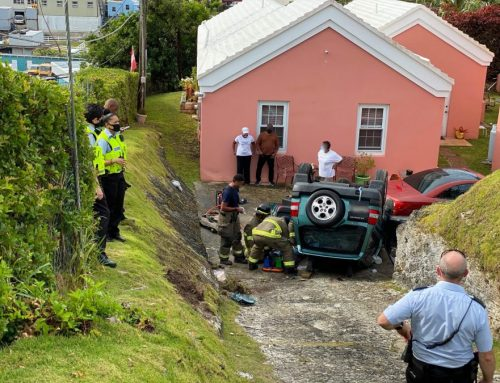 Seniors survive car's plummet down embankment